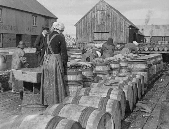 Las mujeres llenan barriles con arenques, sal y hojas de laurel