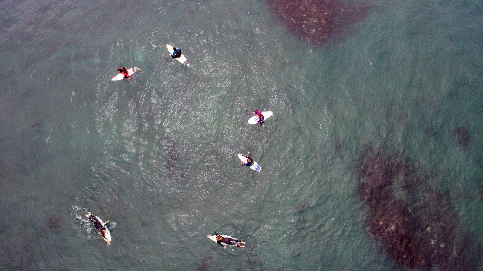 Las surfistas esperan las olas