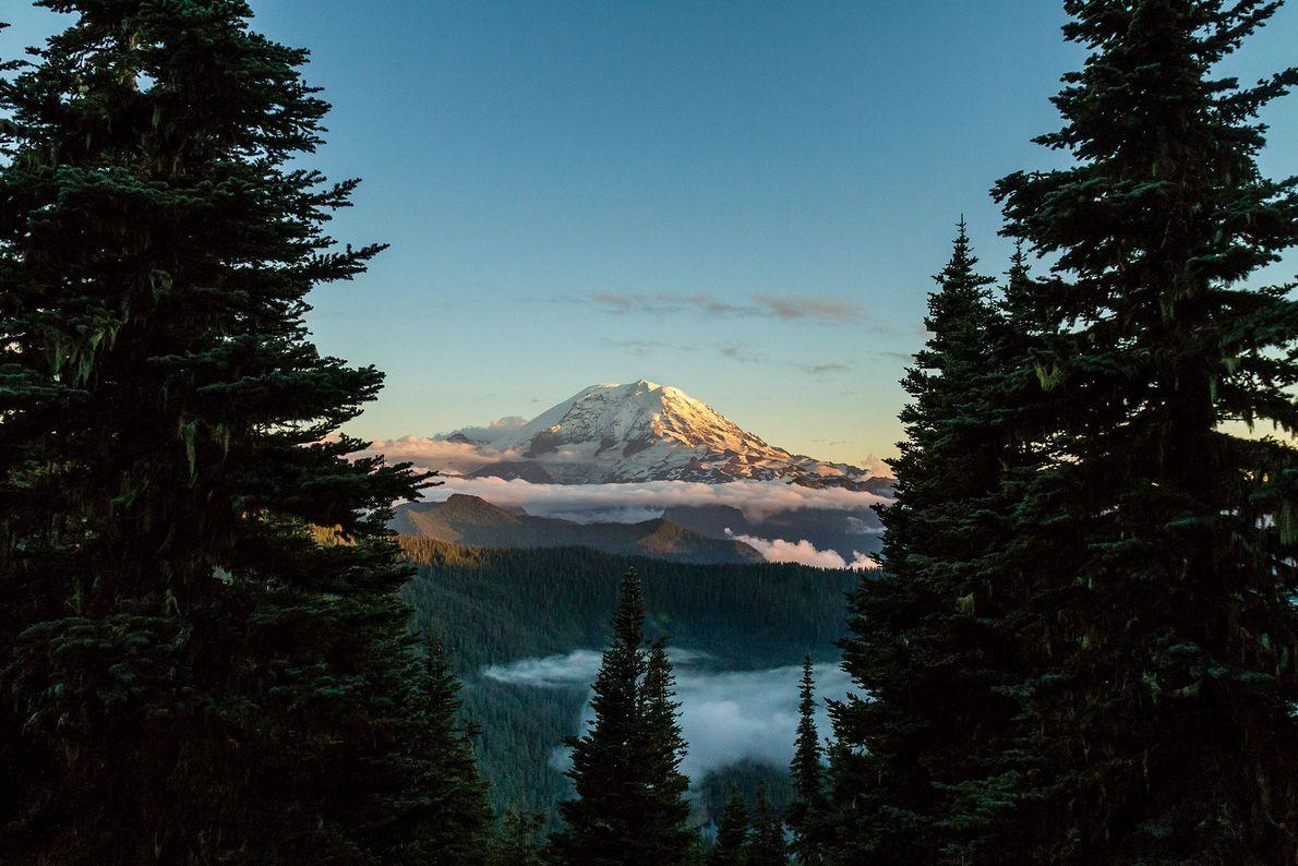 Monte Rainer, Washington