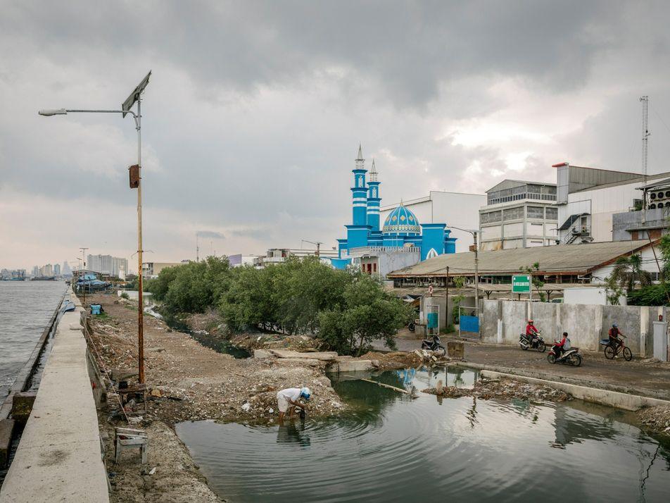 La tierra se hunde y el nivel del mar aumenta: la crisis doble que afrontan las ...