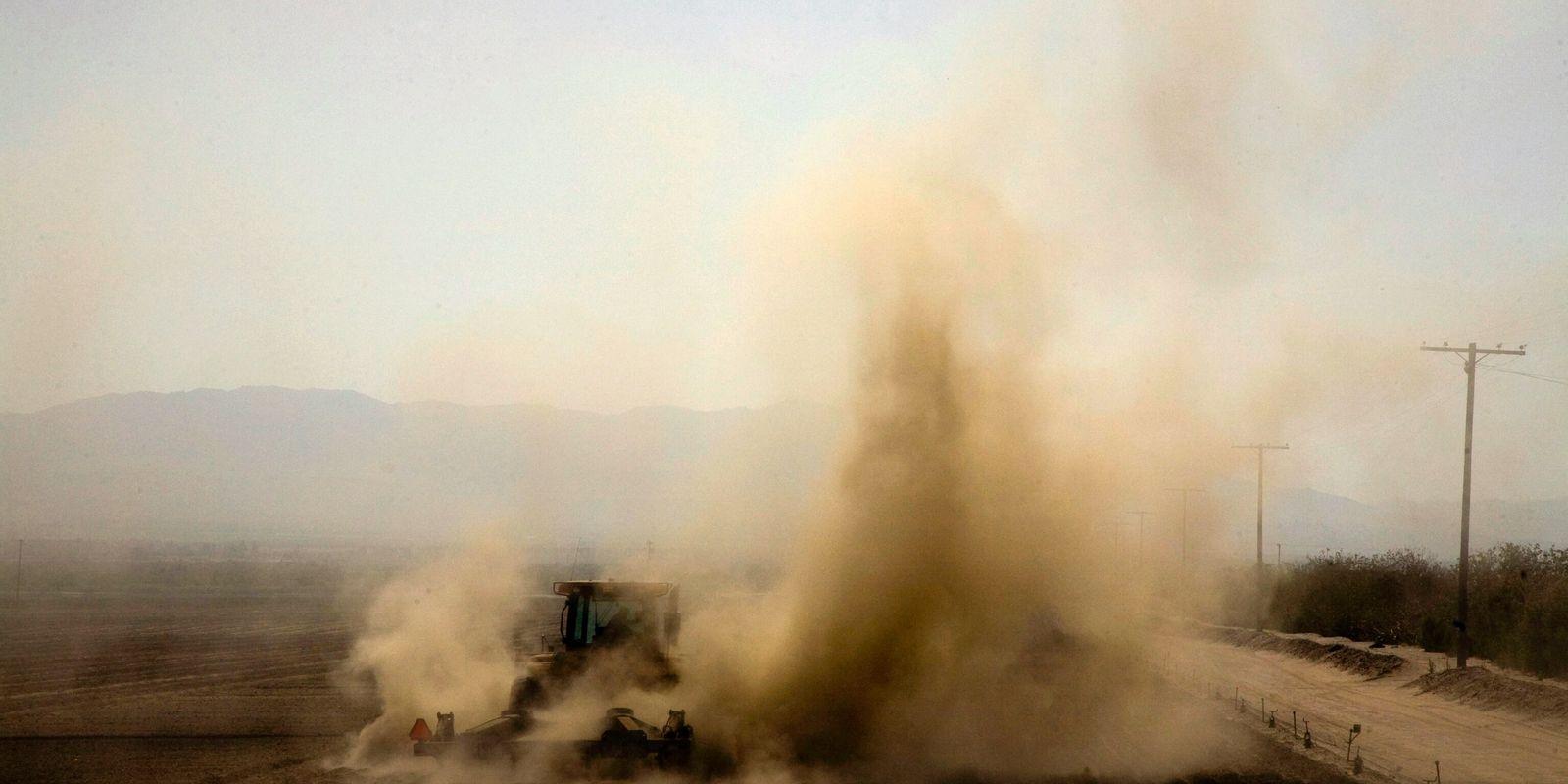 La producción de carne provoca miles de muertes relacionadas con la mala calidad del aire cada ...