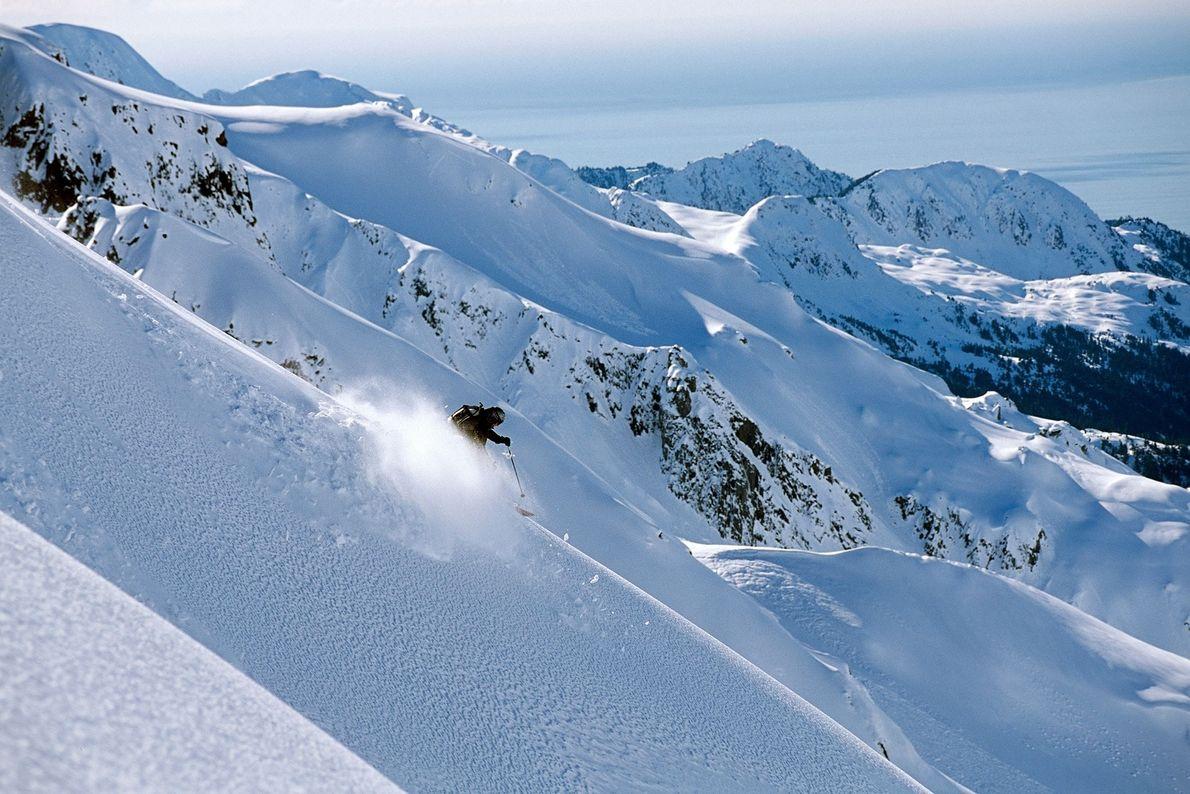 Un esquiador de fondo