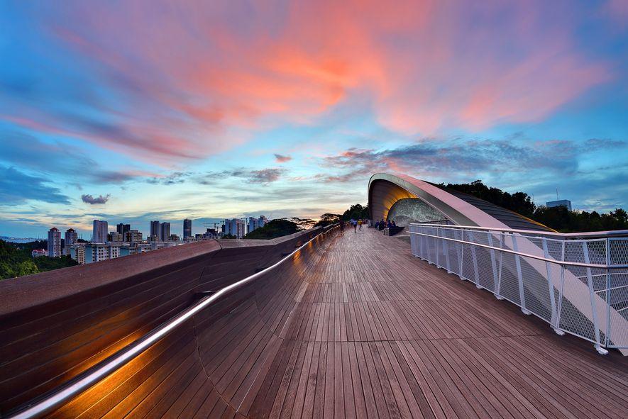 El puente Henderson Wave