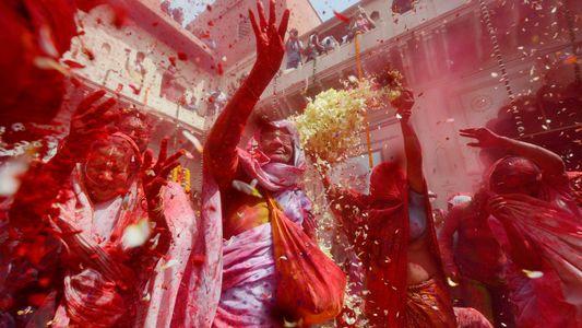 Nueve datos sobre el Holi, el festival más colorido de la India