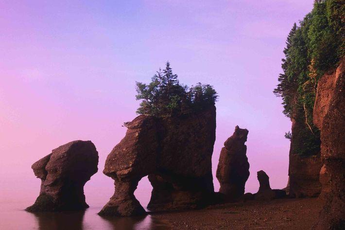 Elephant Rock, Canadá