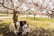 Dennis abraza a los huskies Casey y Mika en Massachusetts