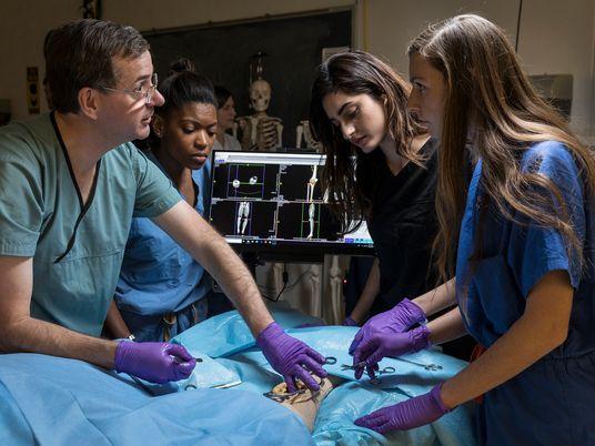 ¿Deberían remplazar los cadáveres digitales a los reales?