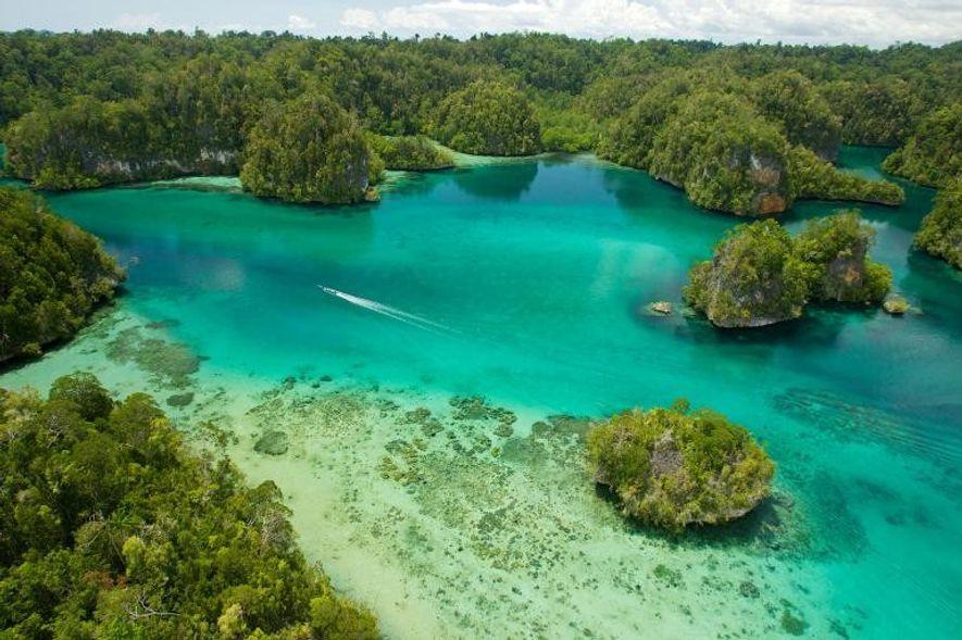 Opta por una de las miles de islas que componen el archipiélago de Indonesia, como las islas Limestone, en Raja Ampat.