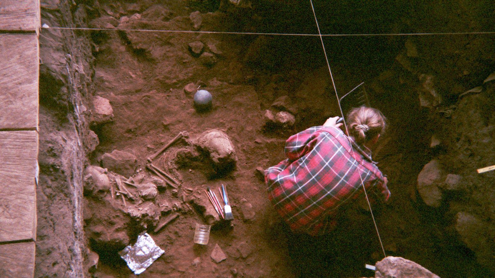 Genoma humano Africa