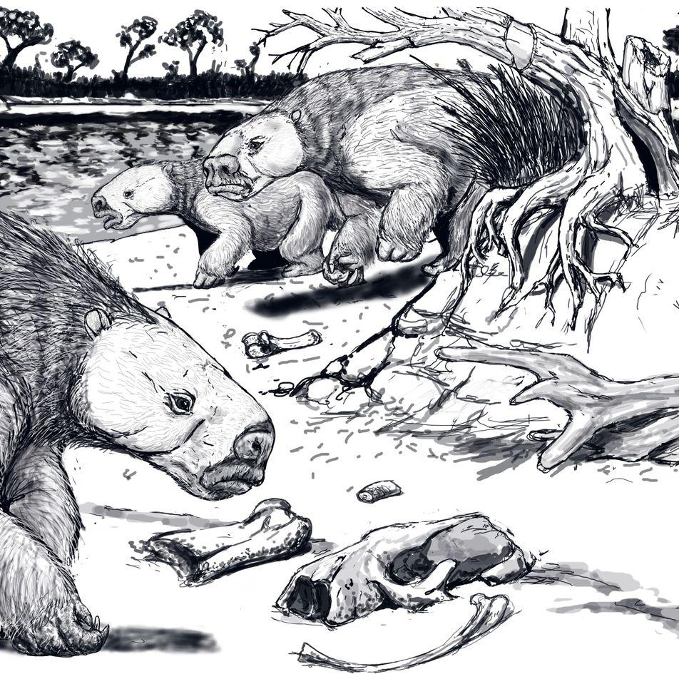 El perezoso terrestre gigante podría haber vivido en grandes grupos durante el Pleistoceno final