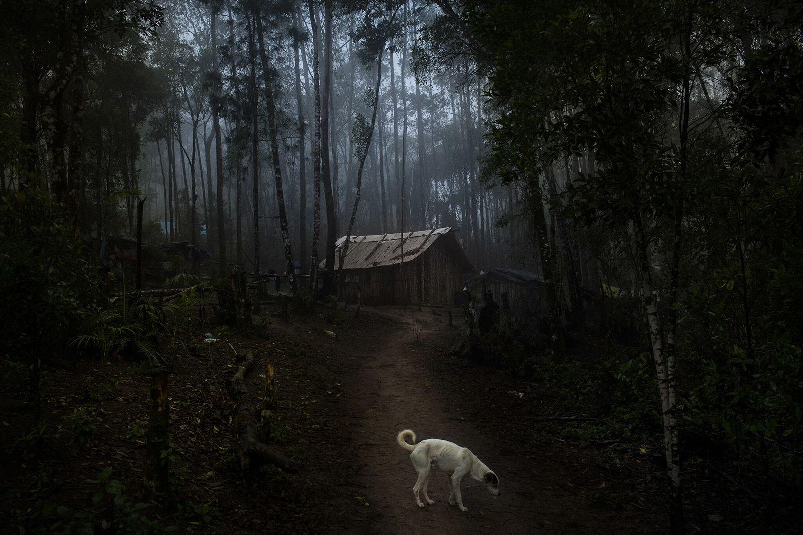 Nueva aldea en el estado de São Paulo
