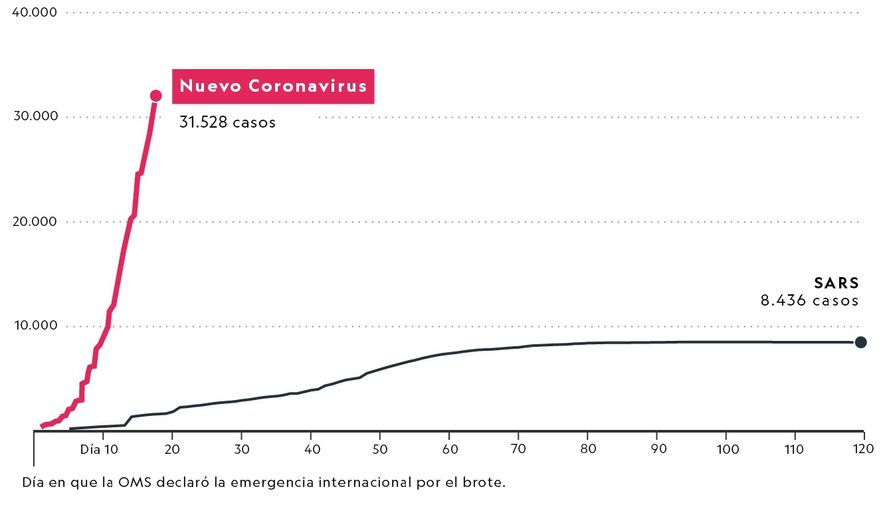 Gráfico del nuevo coronavirus y el SARS.