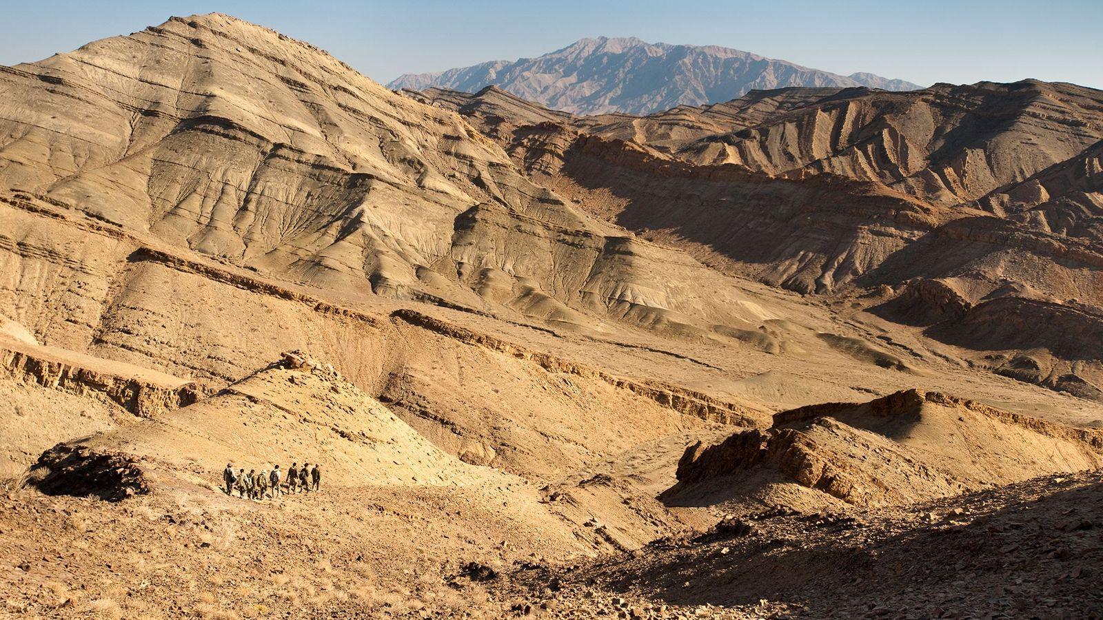 Fundación Patrimonio Silvestre Persa