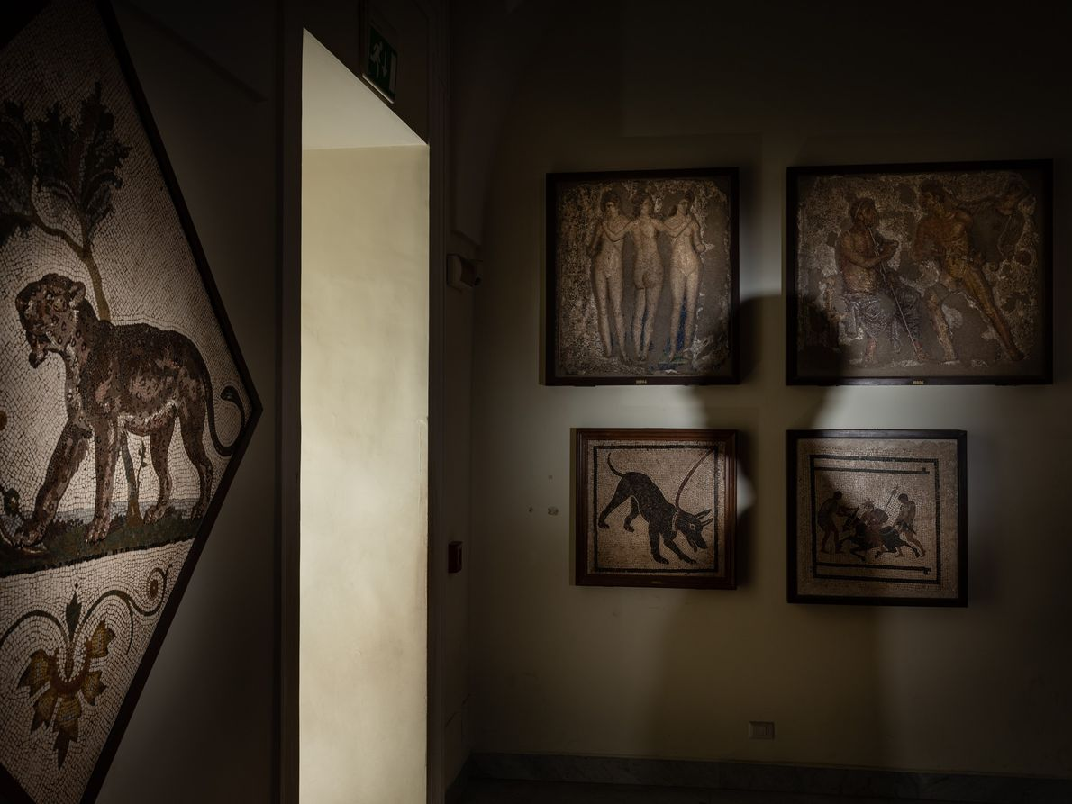 Mosaics excavated from the grand houses of ancient Pompeii flank the walls of the National Archaeological ...