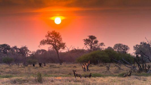 Los sondeos exploratorios de petróleo en la región del Okavango de Namibia plantean un riesgo tóxico