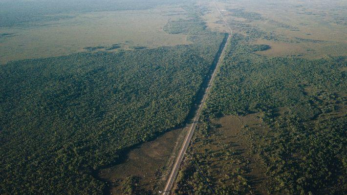 Corredor de la Selva Maya
