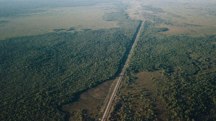El corredor de la Selva Maya es un pasillo forestal que está desapareciendo rápidamente en la ...