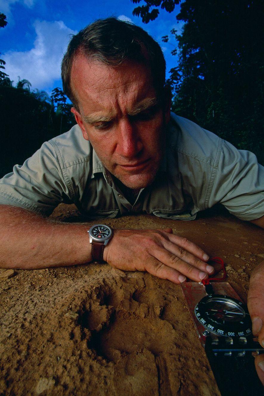 Alan Rabinowitz toma los datos de la huella de un jaguar macho en un camino de ...