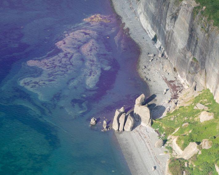 El litoral de Chenik, Alaska