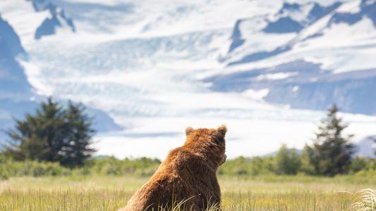Para esta familia, mantener Alaska salvaje y prístina es una misión que ha durado décadas
