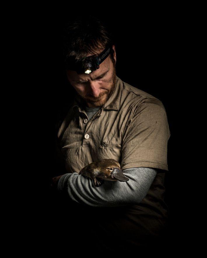 Josh Griffiths sostiene un ornitorrinco