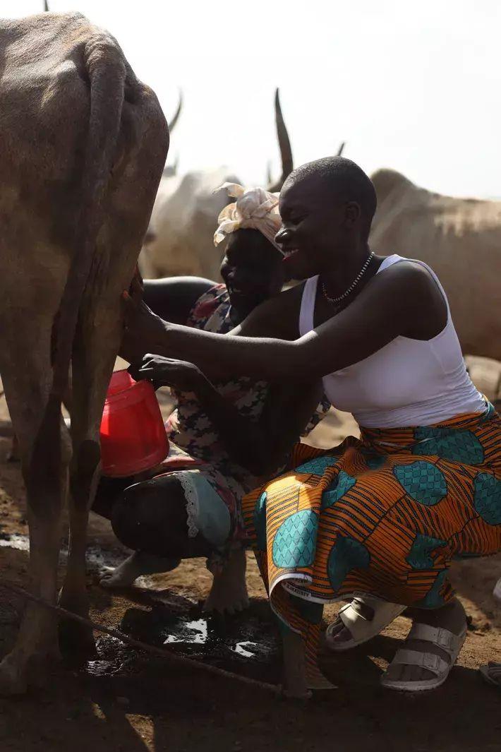 Jessica visita un campamento de ganado en Sudán del Sur