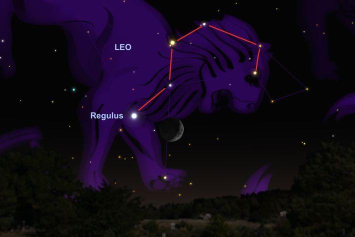 Luna y Regulus