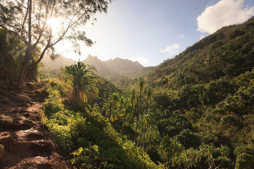 Kalalau Trail, Hawái