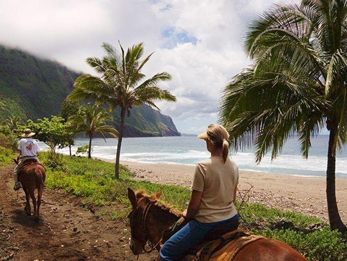 Viaja en mula por la costa histórica de Molokai