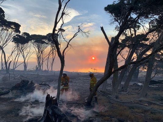 60 horas en la isla Canguro, asediada por el fuego