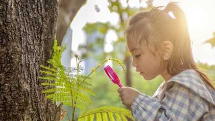 Estos son los beneficios de la naturaleza para los niños