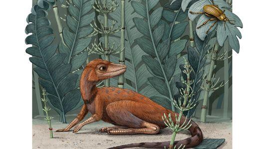 ¿Cómo contribuyó la peor extinción en masa de la Tierra al auge de los dinosaurios?