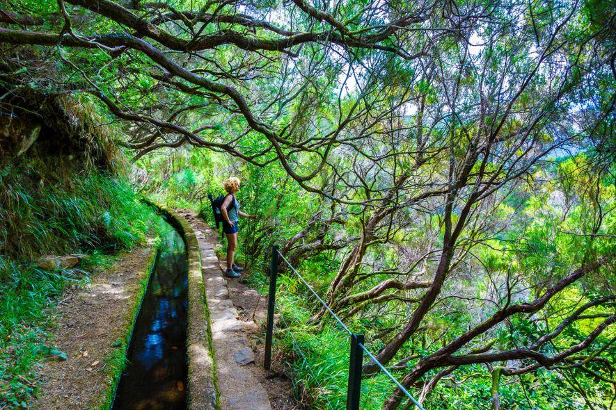 La Levada das 25 Fontes recorre las levadas de Madeira, canales de irrigación históricos que transportan ...