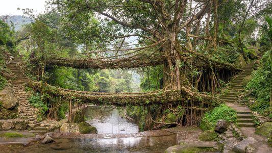 Los mejores puentes del mundo