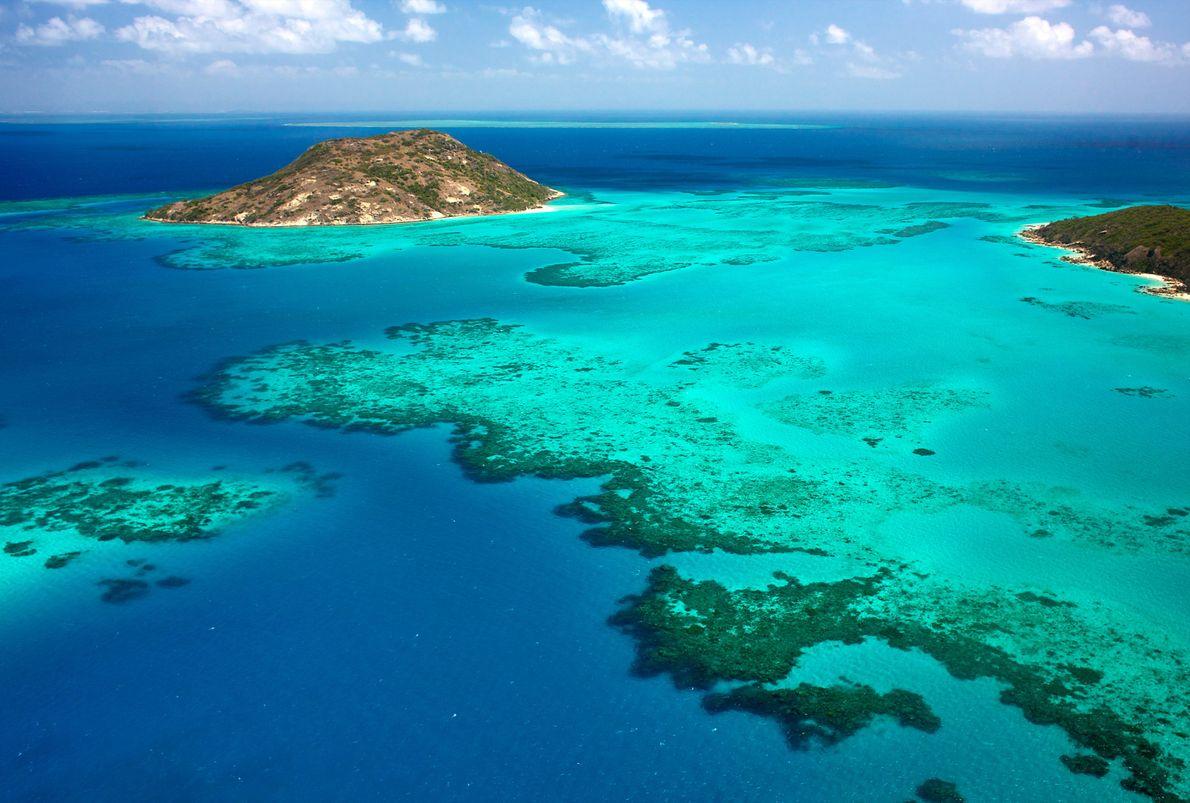 Isla Lagarto