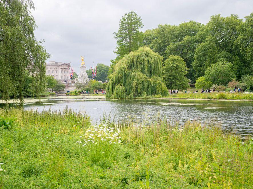 El más viejo de los ocho parques reales de la ciudad, St. James Park, ofrece unas ...