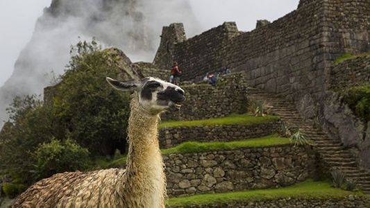 Lugares patrimonio de la humanidad: Machu Picchu