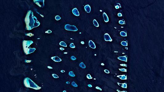 Los microplásticos han llegado prácticamente a todos los rincones del planeta