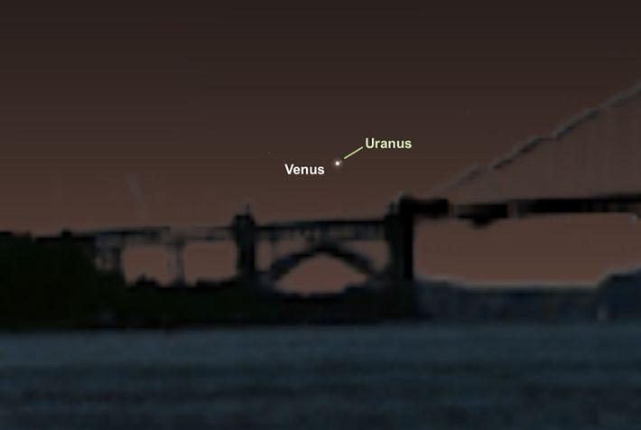 Venus y Urano