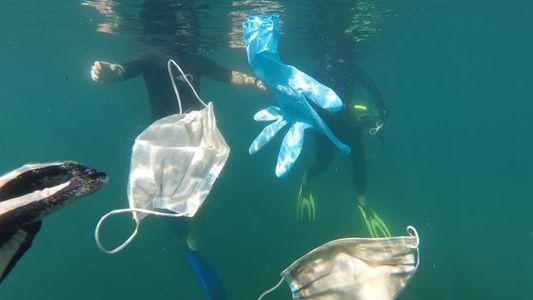 «Pronto podría haber más mascarillas que medusas en las aguas del Mediterráneo»