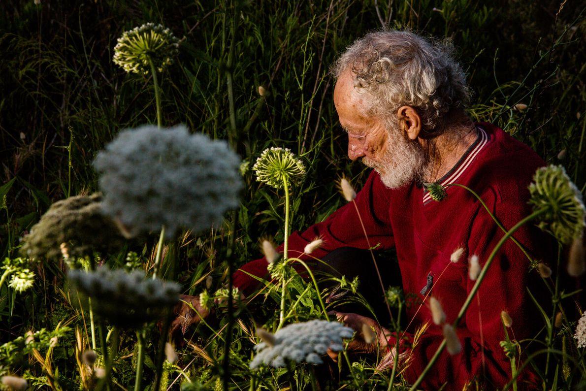Morandi recoge hierbas detrás de su casa