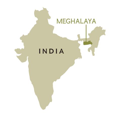 El estado de Meghalaya es conocido como la «morada de las nubes».