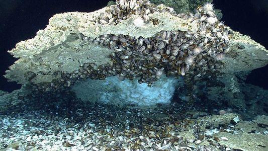 Los océanos albergan grandes cantidades de gases de efecto invernadero que podrían agravar el calentamiento