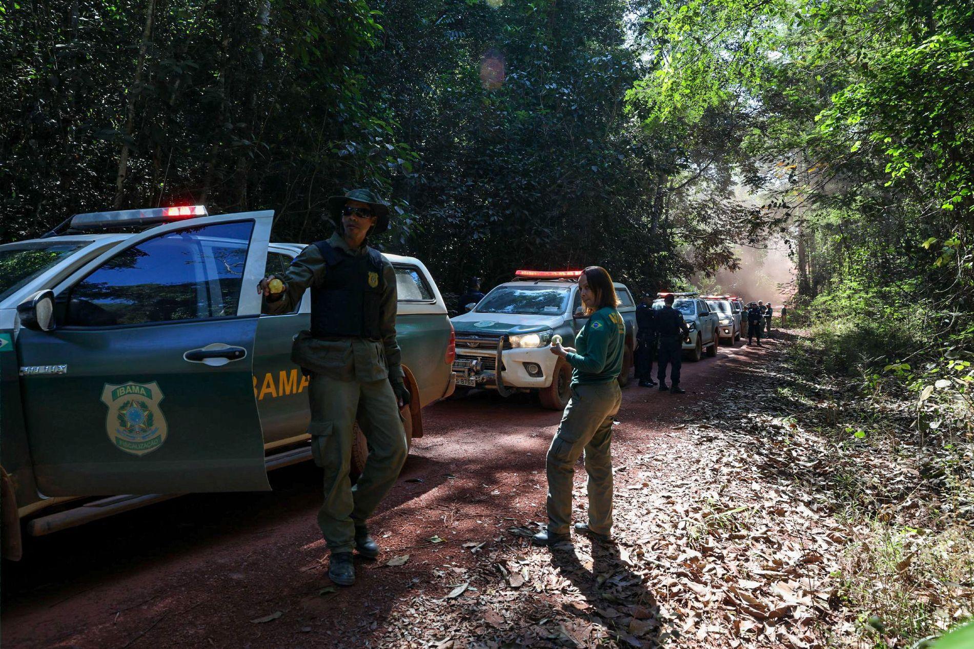 Los agentes del IBAMA peinaron las carreteras secundarias de Espigão d'Oeste para encontrar madera talada de ...