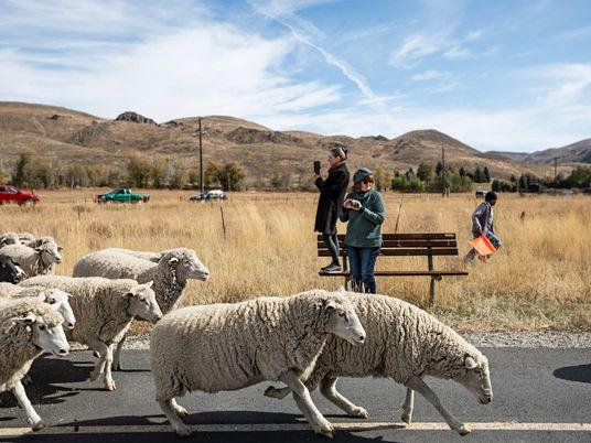 Cultura vasca en Idaho (1)