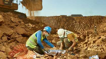 Los preciados fósiles de primates descubiertos en un vertedero de Cataluña