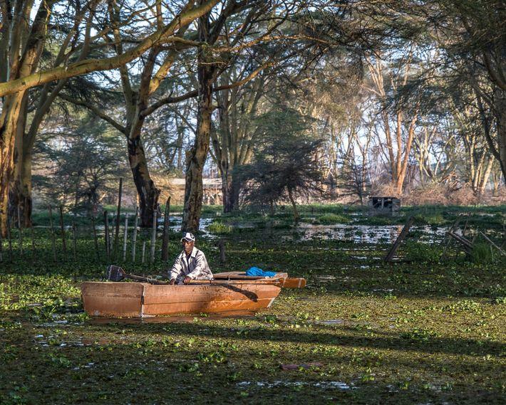Un pescador regresa con la captura de la mañana