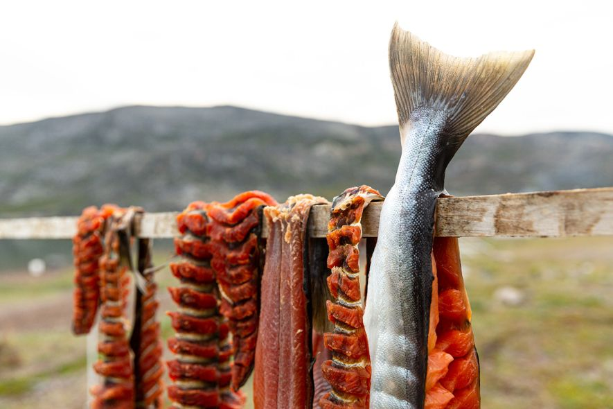 Truchas alpinas