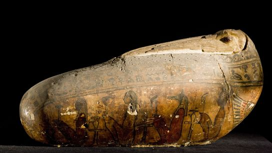 Momia votiva de ibis