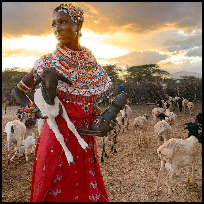 Rastreadora de animales, Kenia